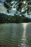 Kandy Sri Lanka Royaltyfria Bilder