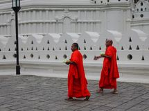 Buddhist monks in bright orange robe royalty free stock photos