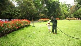 KANDY, SRI LANKA - FEBBRAIO 2014: Fiori d'innaffiatura del giardiniere nei giardini botanici di Kandy mentre la bambina sta gioca archivi video