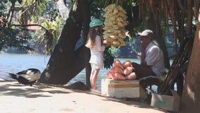 KANDY, SRI LANKA - FEBRUAR 2014: Bemannen Sie den Verkauf des Popcorns auf der Straße durch den See und die Unterhaltung mit eine stock video footage