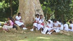 KANDY, SRI LANKA - FEBRUAR 2014: Die Ansicht von den lokalen Schulmädchen, die ihr Mittagessen im botanischen Garten in Kandy ess stock footage