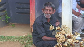 KANDY, SRI LANKA - FEBRUAR 2014: Schließen Sie herauf die Ansicht des Mannes Blumen nahe dem botanischen Garten in Kandy verkaufe stock footage