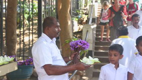 KANDY, SRI LANKA - FEBRUAR 2014: Schließen Sie herauf die Ansicht des Mannes Blumen nahe dem Tempel des Zahnes in Kandy verkaufen stock video