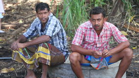 KANDY, SRI LANKA - FEBRUAR 2014: Zwei Elefantwächter, die nahe dem Tempel des Zahnes in Kandy sitzen stock video footage