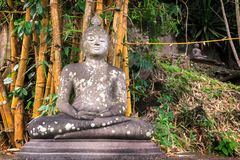 Ancient Buddha statue in meditation among a rainforest Stock Photos