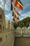 Kandy Sri Lanka - tempel av tanden Royaltyfria Bilder