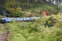 Kandy till den Ella drevresan - Sri Lanka fotografering för bildbyråer