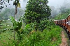 Kandy till den Ella drevresan - Sri Lanka arkivfoton