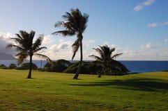 kanehoe гольфа стоковое изображение
