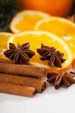 Kanel och apelsiner under jultid arkivfoto