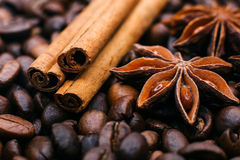 Kanel- och stjärnaanis på kaffebönor Arkivfoto