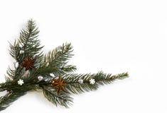 Kanelbrun anis för jul med garnering November 14, 2014 Arkivfoto