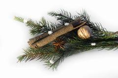 Kanelbrun anis för jul med garnering November 14, 2014 Arkivfoton