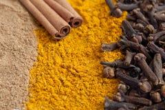 Kanelbrun jordning och i sticks, kryddnejlikor, curry Royaltyfri Bild