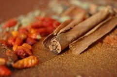 kanelbrun krydda Arkivbild