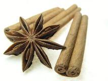 kanelbrun kryddastjärna Royaltyfri Fotografi