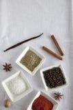 kanelbrun kryddastjärna för anise Fotografering för Bildbyråer