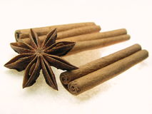 kanelbrun kryddastjärna för anise Royaltyfri Fotografi