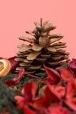 kanelbrun kryddnejlikamandarin royaltyfri fotografi
