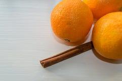 Kanelbrun pinne och mandariner Arkivfoto
