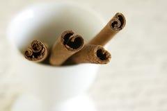 kanelbrun stick Royaltyfri Foto