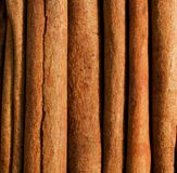 kanelbrun stick Arkivfoto