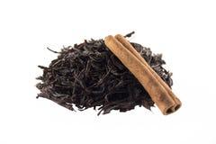 kanelbrun tea Fotografering för Bildbyråer