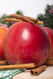 kanelbruna äpplen Arkivfoto