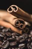 kanelbruna kaffesticks för bönor Selektivt fokusera Royaltyfri Foto
