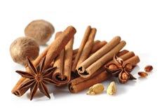Kanelbruna pinnar och kryddor Royaltyfria Bilder