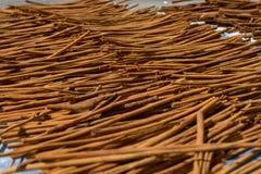 Kanelbruna pinnar som torkar i solen Royaltyfri Fotografi