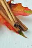 kanelbruna sticks Royaltyfria Bilder