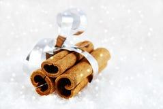 Kanelbruna sticks i snowen Royaltyfri Foto