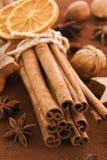 Kanelbruna Sticks med kakao Royaltyfri Foto