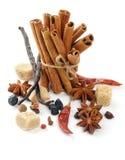 Kanelbruna Sticks och kryddor Arkivbilder