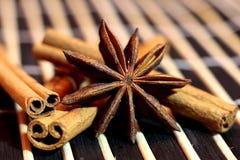 kanelbruna stjärnasticks för anise Royaltyfria Foton