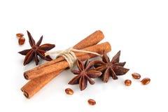 kanelbruna stjärnasticks för anise Royaltyfria Bilder