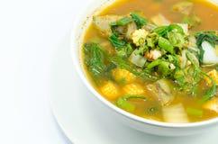 Kang Pa (växt- curry) Royaltyfri Bild