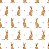 2018 01 23_kangaroo ilustracja wektor