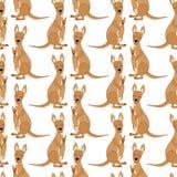 2018 01 23_kangaroo illustrazione vettoriale
