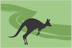 Kangaroo. Illustration of a kangaroo jumping Stock Photos