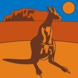 Kangaroo Stock Images