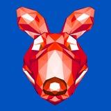 Kangaroo stock illustration