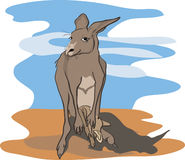 Kangaroo with baby kangaroo against abstract backg Stock Photo
