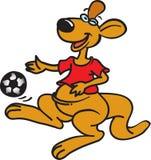 Kangaroo with ball Stock Images