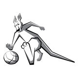 Kangaroo basketball player 3 Stock Photos