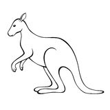 Kangaroo black white isolated illustration Royalty Free Stock Image