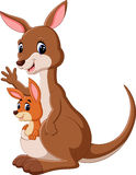 Kangaroo boxing. Illustration of cute Kangaroo cartoon Stock Image