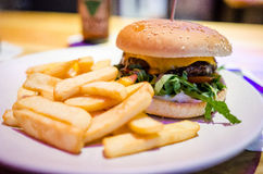 Kangaroo burger and fries Stock Images
