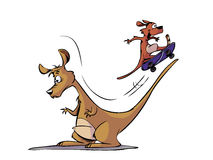 Kangaroo cartoon Stock Photo